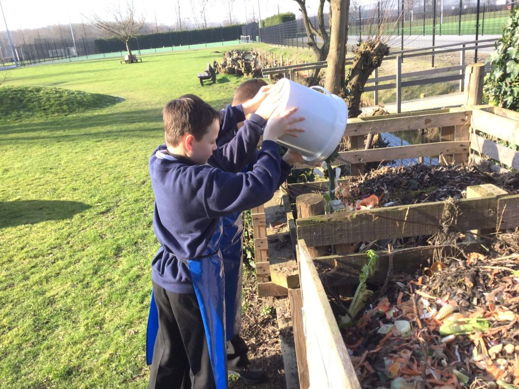 Composting Peelings from Food Tech Lessons